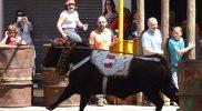 2008 04 25 Carcabuey en Beas de Segura Torocuerda (81)