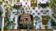 absolutcordoba_patiodecordoba