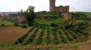 el-castillo-de-belalcazar_216049