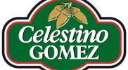 logo_celestino