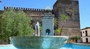torreon y fuente 2